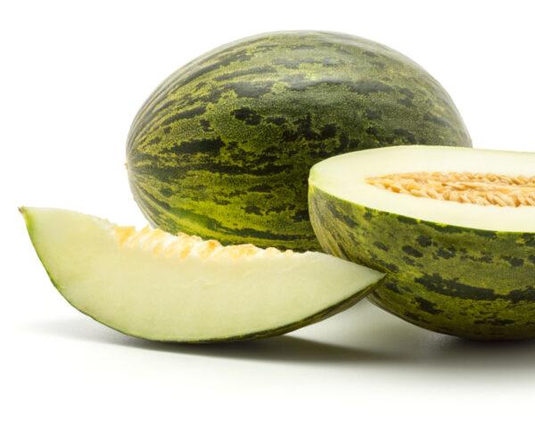 melón piel de sapo
