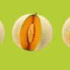 Dumas y el melón charentais